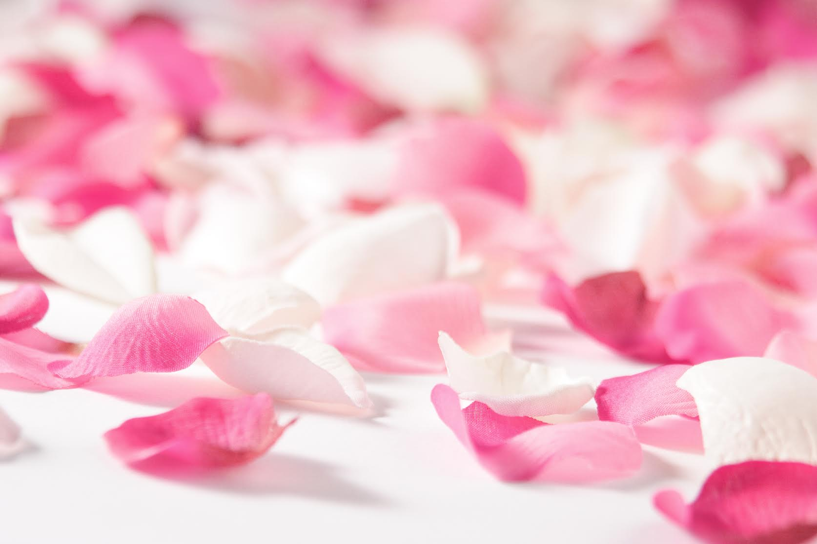 background-rose-petals